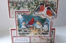 Kartka świąteczna #17 z ptaszkami