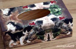 Chustecznik z kociętami
