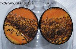 Pomarańczowe drzewa