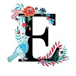 Alfabet E wydruk ilustracji