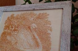 11B. Obraz Drzeworyt Łabędź (345x258)mm