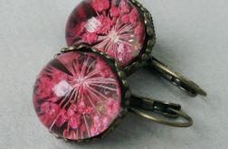 Wieczne Kwiaty kula PINK