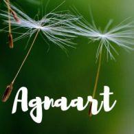 Agnaart