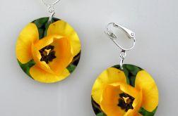 Tulipany - klipsy