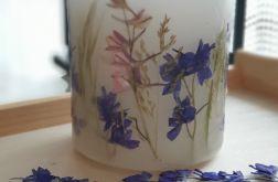 świece FLORA -z naturalnymi roślinami #12