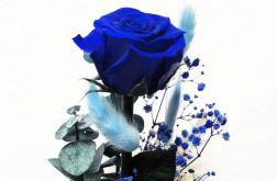 Wieczna róża w szklanej kopule 24cm + kwiaty