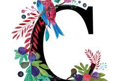 Alfabet C wydruk ilustracji