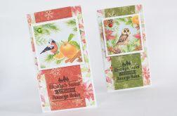 Zimowe ptaszki - zestaw 2 kartek