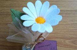 Margaretka - kwiat z filcu - zielona doniczka