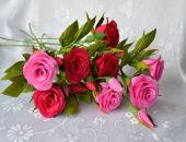 Róża - gałązka