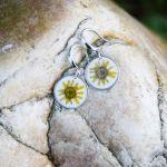 Zatopki żółty kwiat - 4