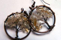 Cytryn, kolczyki drzewka, wire wrapping