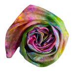 Ręcznie barwiony szal jedwabny /307/ - szal jedwab