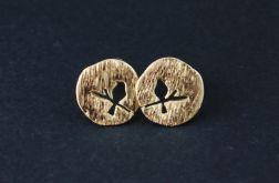 Kolczyki wkrętki ptak na gałęzi - złote
