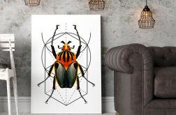 Plakat Bug #2 50X70 B2