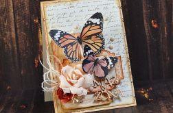 Mąż & Żona - motylowa