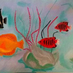 ryby pastel