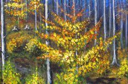 Jesień odchodzi przez las