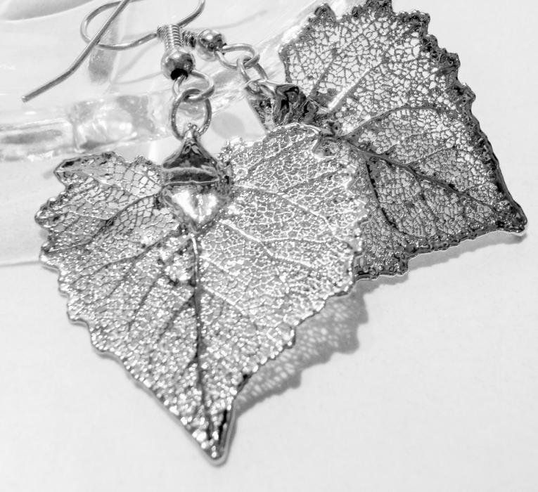 Bawelna w srebrze-kolczyki