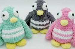 Pingwinek różowy