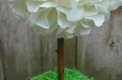 drzewko wiosenne