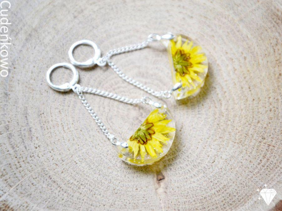 Zatopki żółte kwiaty - 2