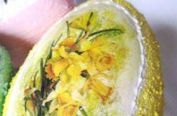 Wiosenne strukturalne jajo