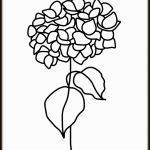 Hortensja, grafika autorska, minimalistyczna i nowoczesna - Prosta forma