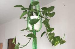 Makrama na kwiaty odcienie zielieni