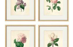 Grafika Kwiaty wydruk plakat zestaw 4