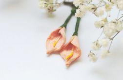 Letnie kwiaty - Kalie