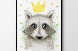 Plakat, obrazek król szop 50X70 B2