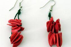 Kolczyki z pestek melona – czerwony