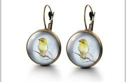 Kolczyki - Śpiewający ptaszek - bigle angielskie - antyczny brąz