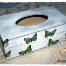 Chustecznik motylkowy