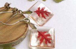 Kolczyki- jesienne liście