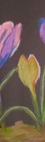 krokusy pastel 1