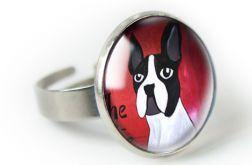 Buldog pierścionek z ilustracją