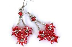 Kwiaty Długie Czerwono Srebrzyste