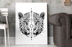 Plakat Plakat Kot gepard 50X70 CM B2