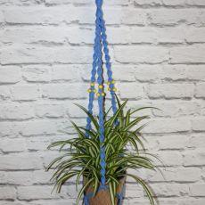 Niebieski kwietnik