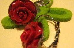 Róże w miseczkach - bigle angielskie