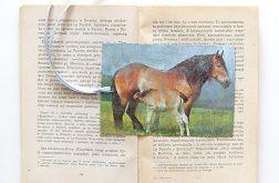Vintage zakładka - konie 3
