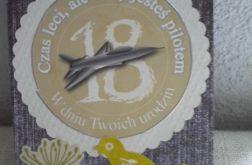 Dla pasjonata lotnictwa - kartka na 18 lat