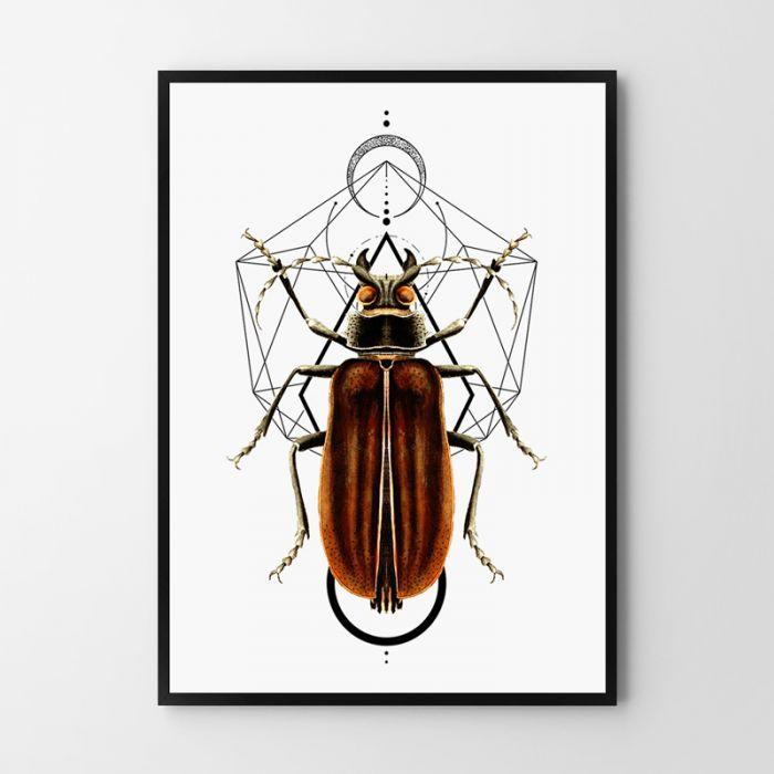 Plakat Bug 50X70 B2