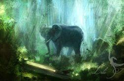 Obraz Słoń, Dżungla - płótno - malowany
