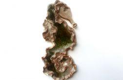 Konik morski zielony 02