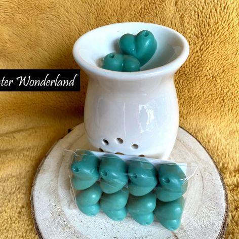 Winter Wonderland - wosk zapachowy sojowy