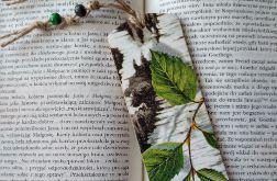 zakładka z korą i gałązką brzozy