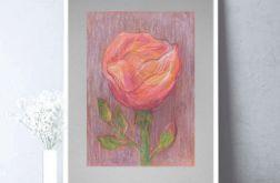 Rysunek kwiat na szarym tle nr 4 - obrazek